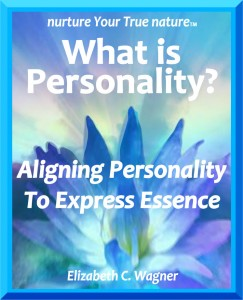 NYTN 7 image 11_Personality-Cover